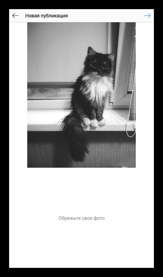 Завершение публикации из InstaSize в Instagram