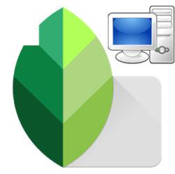 Snapseed для компьютера