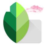 Как сделать розовое небо в Snapseed