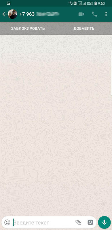 открытая страница whatsapp из instagram